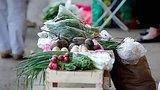 видео 2 мин. 50 сек. Доброе утро: Несанкционированная торговля с рук (10.06.2015) раздел: Новости, политика добавлено: 12 июня 2015