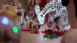 видео 31 сек. Реклама Dreamies - Новогодняя раздел: Рекламные ролики добавлено: 27 декабря 2016