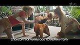 видео 10 сек. Реклама Конфеты Левушка - Дико вкусно (Николай Дроздов) раздел: Рекламные ролики добавлено: 31 декабря 2016