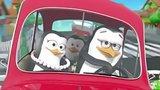 видео 20 сек. Реклама Бумага Фамилия | Familia - Пингвины на машине раздел: Рекламные ролики добавлено: 31 января 2017