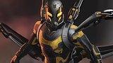 видео  Человек-муравей (2015)   Фан-ролик раздел: Кино, ТВ, телешоу добавлено: 1 июля 2015