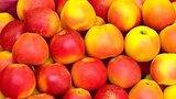 видео 2 мин. 48 сек. Доброе утро: Летние витамины (02.07.2015) раздел: Новости, политика добавлено: 2 июля 2015