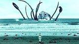 видео 5 мин. 20 сек. 12 МИФИЧЕСКИХ СУЩЕСТВ, ПРООБРАЗАМИ КОТОРЫХ МОГЛИ БЫ БЫТЬ РЕАЛЬНЫЕ ЖИВОТНЫЕ раздел: Юмор, развлечения добавлено: 28 сентября 2017