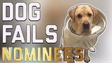 видео 4 мин. 52 сек. Лучшие Сбой 29 собака: FailArmy зал славы (декабря 2017) раздел: Юмор, развлечения добавлено: 11 декабря 2017
