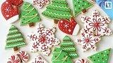 видео 75 мин. 13 сек. Печём рождественские пряники LIVE раздел: Новости, политика добавлено: 5 января 2018