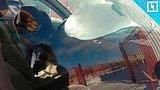 видео 1 мин. 33 сек. Глыба льда рухнула на машины раздел: Новости, политика добавлено: 11 марта 2018