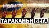 видео 3 мин. 14 сек. Галилео | Тараканьи бега ? Cockroach running раздел: Технологии, наука добавлено: 12 апреля 2018