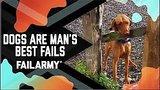 видео 6 мин. 17 сек. Собаки лучше человека не удается!! (Май 2018) Пожар раздел: Юмор, развлечения добавлено: 23 мая 2018
