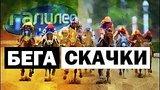 видео 5 мин. 17 сек. Галилео   Бега и скачки ? Race and runs раздел: Технологии, наука добавлено: 24 мая 2018
