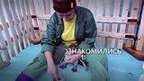 видео 1 мин. 10 сек. Очковый пингвиненок из Красноярска раздел: Новости, политика добавлено: 1 октября 2018