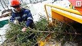 видео 17 мин. 11 сек. Как избавиться от новогодней ёлки? раздел: Новости, политика добавлено: 10 января 2019