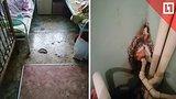видео 1 мин. 42 сек. Больница, где страшно лечить детей раздел: Новости, политика добавлено: 13 января 2019