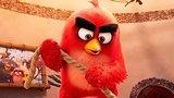 видео 1 мин. 11 сек. Angry Birds 2 в кино — Русский фрагмент (2019) раздел: Кино, ТВ, телешоу добавлено: 15 мая 2019