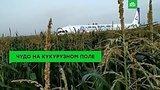 видео 1 мин. 5 сек. Чудо на кукурузном поле: пилоты спасли жизнь 226 пассажиров раздел: Новости, политика добавлено: 16 августа 2019
