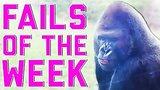 видео 5 мин. 43 сек. Лучшие обломы недели 4 апреля 2015 FailArmy раздел: Юмор, развлечения добавлено: 12 июня 2015